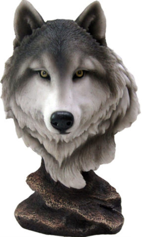 Photo of Noble Wolf Bust