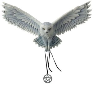 Photo of Awaken your Magic Wise Owl Wall Plaque (Anne Stokes) 45 cm