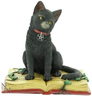 Photo of Black Cat on Spell Book Figurine 12cm