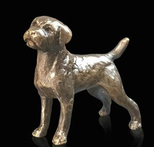 Photo of Border Terrier Bronze Miniature (Butler and Peach)