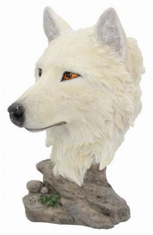 Photo of Snow Wolf Bust 16 cm
