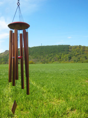 Photo of Woodstock Encore Chimes of Erath