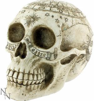 Photo of Astrological Skull 20cm