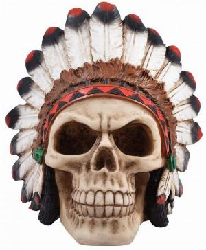 Photo of Indian Skull