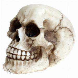 Photo of Joker Skull Ornament 11.5cm