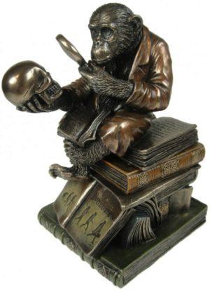 Photo of Darwinism of Evolutionary Theory Figurine Box