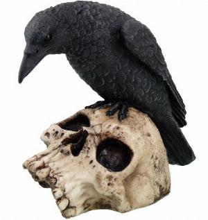 Photo of Raven On Skull Ornament
