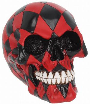 Photo of The Fool Skull