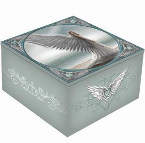 Photo of Spirit Guide Mirror Box (Anne Stokes)