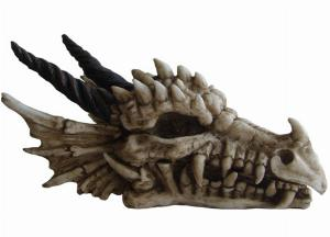 Photo of Dragon Skull Box