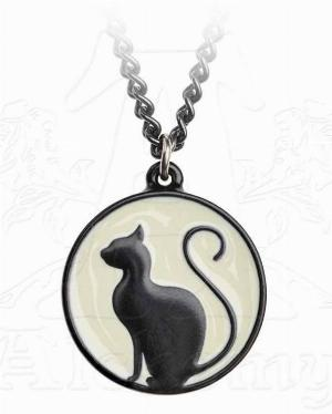 Photo of Black Cat on the Moon Pendant