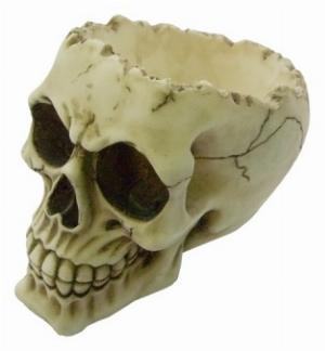 Photo of Lobo Skull Bowl