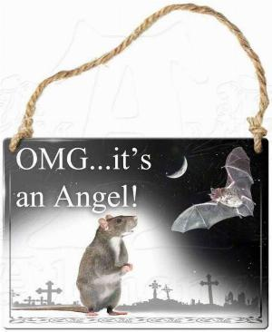 Photo of Omg Its An Angel! Small Steel Plaque