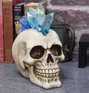 Photo of Crystal Hawk Skull Ornament Light Feature