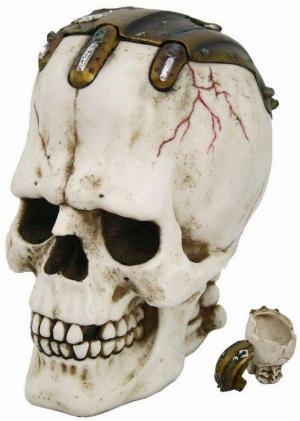 Photo of Frank Skull Box 20cm