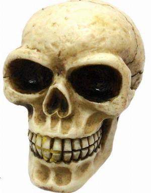 Photo of Skull Gear Knob