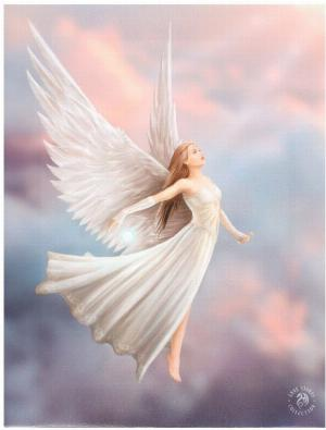 Photo of Ascendance Canvas Angel Picture (Anne Stokes) 25 x 20 cm