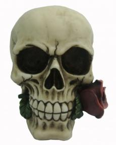 Photo of Romantic Skull