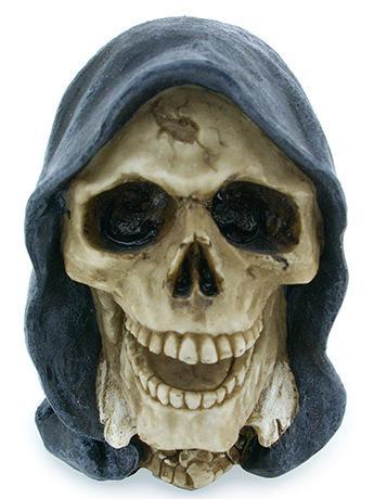Photo of Reaper Skull