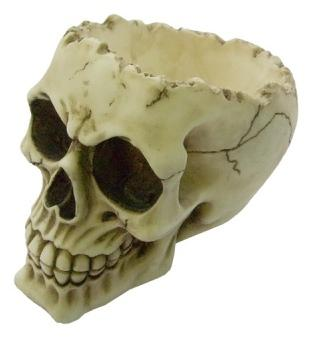 Photo of Lobo Skull Bowl