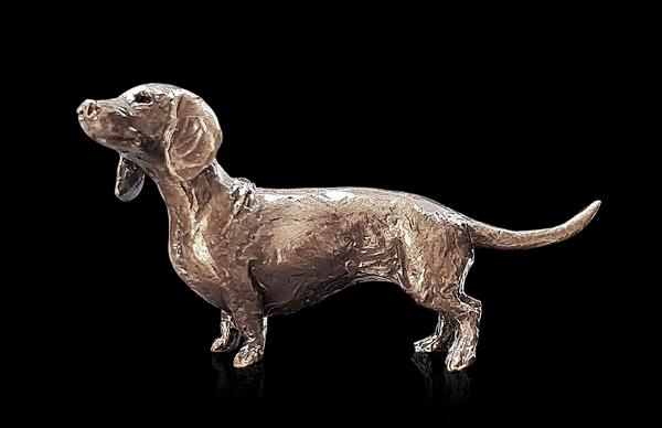 Photo of Dachshund Bronze Miniature (Butler and Peach)