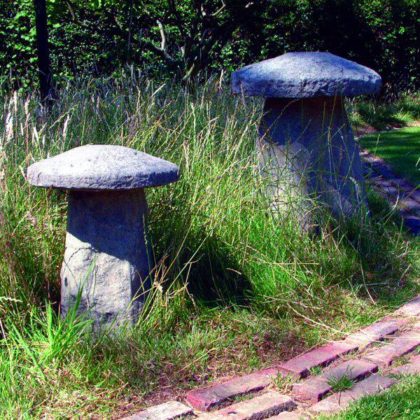 Photo of Staddlestones (One Large and One Small)