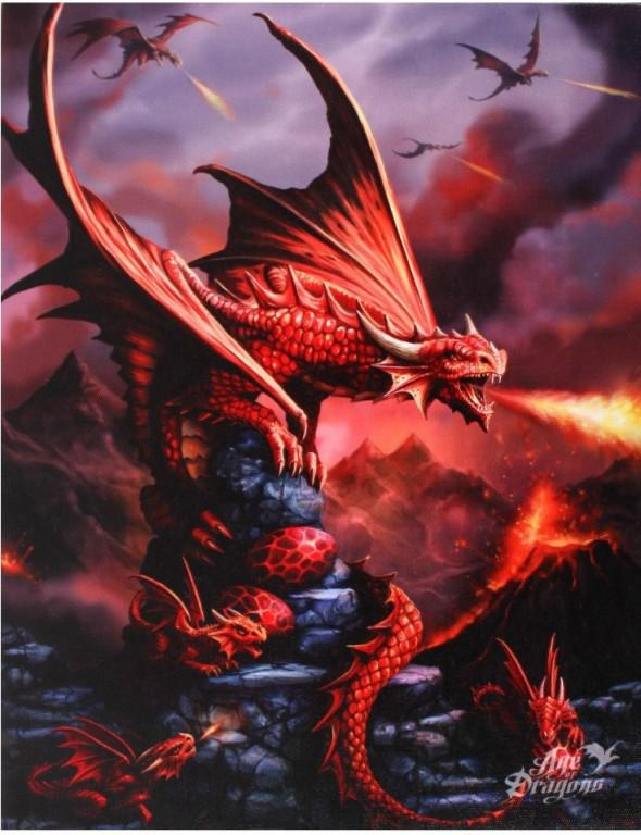 Photo of Fire Dragon Canvas Picture (Anne Stokes) 25 x 20 cm