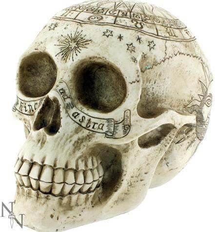 Photo of Astrological Skull 20cm