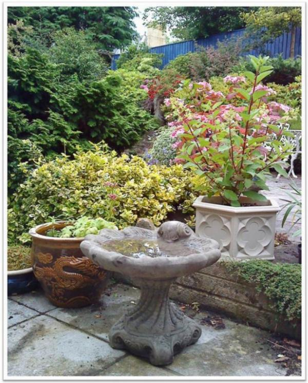 Photo of Shell Stone Birdbath