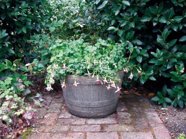 Photo of Barrel Tub Stone Planter