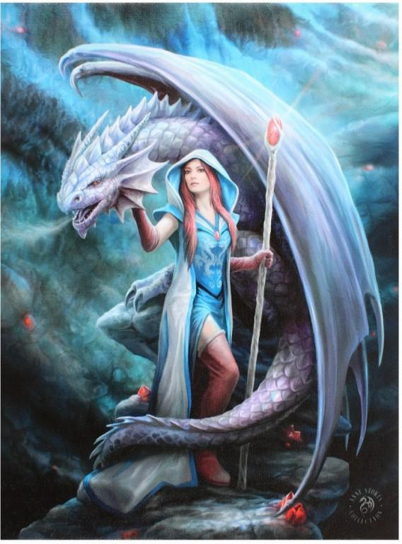 Photo of Dragon Mage Canvas Picture (Anne Stokes) 25 x 20 cm