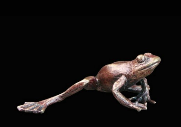 Photo of Frog Bronze Miniature (Butler and Peach)