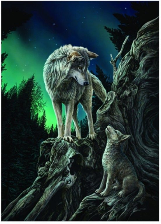 Photo of Guidance Wolf 3D Poster 28 x 38 cm