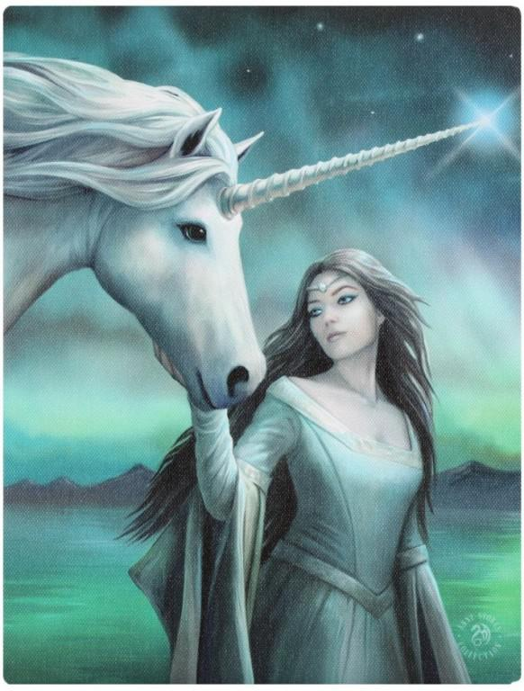 Photo of North Star Canvas Unicorn Picture (Anne Stokes) 25 x 20 cm