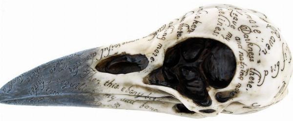 Photo of Edgars Raven Skull Ornament 20cm