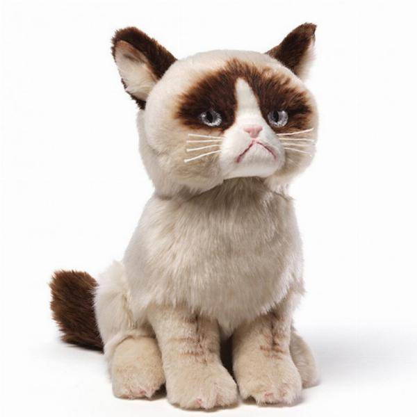 Photo of Grumpy Cat Soft Toy