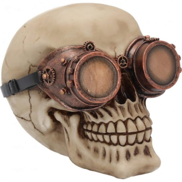 Photo of Steampunk Skull Tinkerer Ornament
