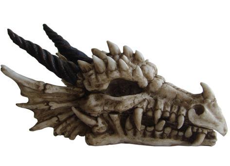 Photo of Dragon Skull Box