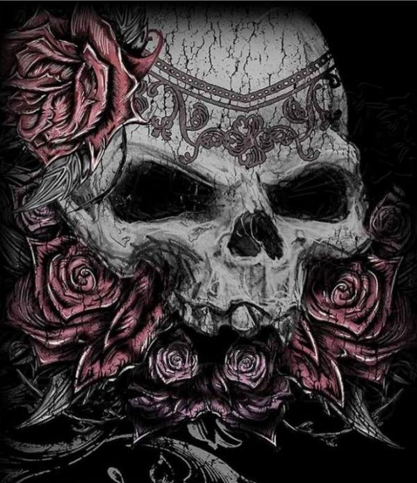 Photo of Charleston Skull Tunic Girlie Top Alchemy Gothic