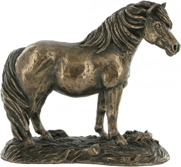 Photo of Shetland Pony Cold Cast Bronze Sculpture by Harriet Glen