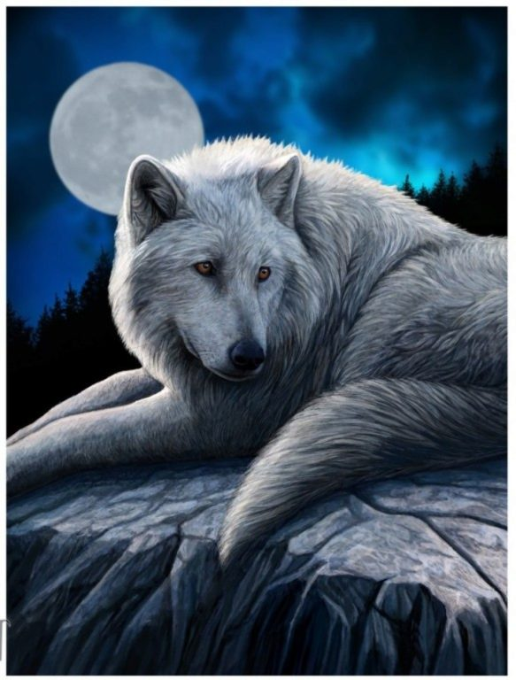 Photo of Guardian of The North Wolf 3D Poster 28 x 38 cm
