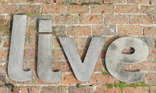 Photo of LIVE Wall Plaque (Set of Four Large Stone Letters)