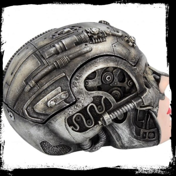 Photo of Cyber Beauty Skull Box