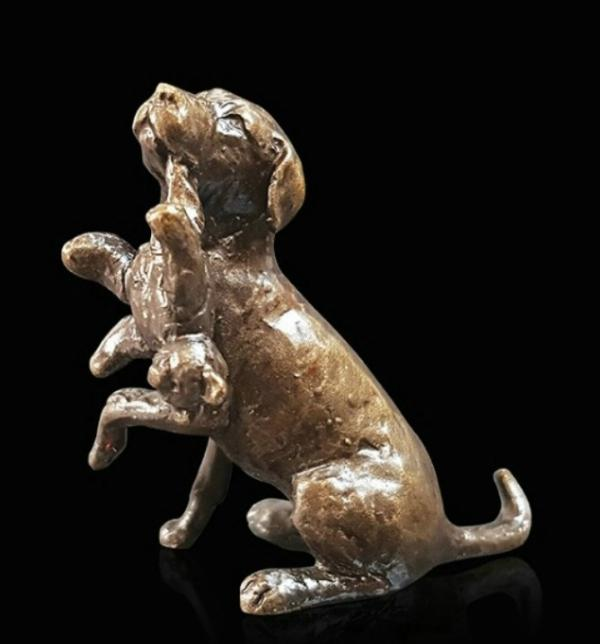 Photo of Labrador with Teddy Bronze Miniature (Butler and Peach)