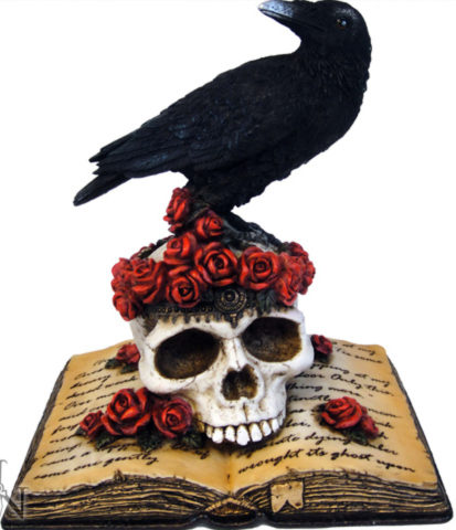Photo of Ravens Heartache On Skull