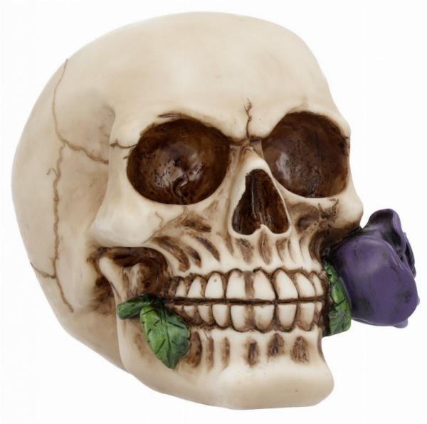 Photo of Romantic Skull Purple