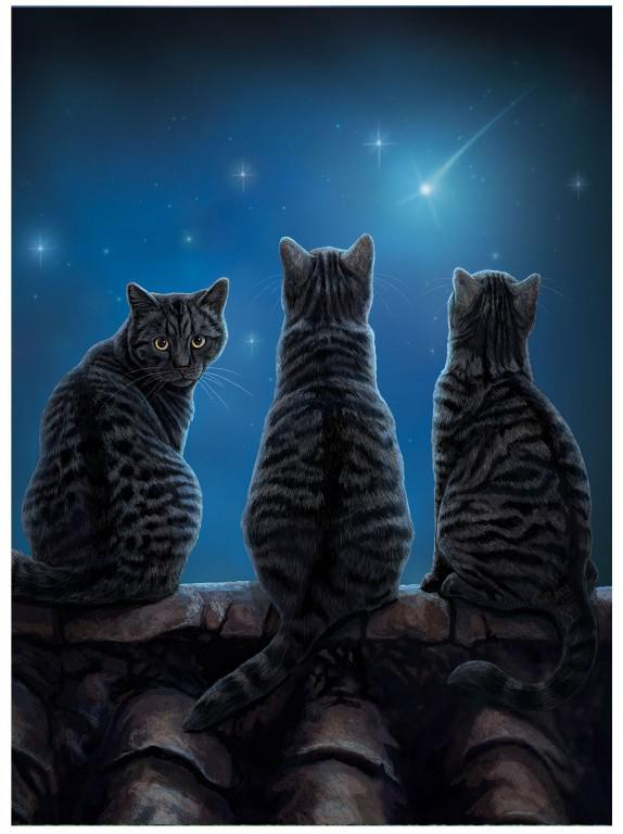 Photo of Wish Upon a Star Cat 3D Picture (Lisa Parker) 28 x 38 cm