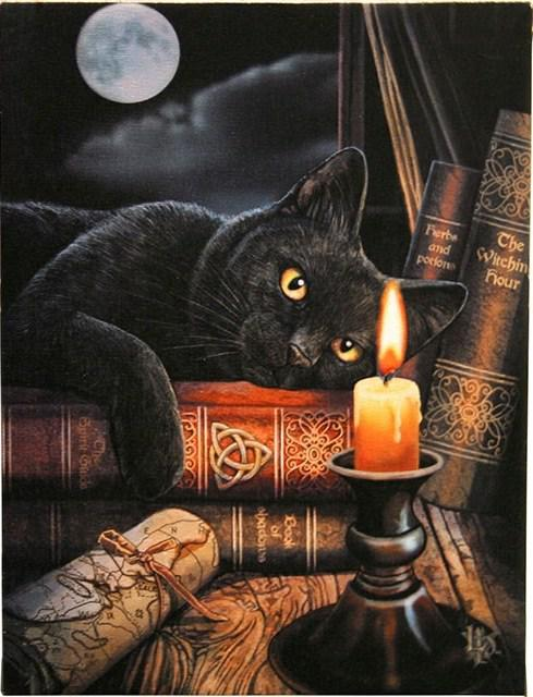 Photo of Witching Hour Canvas Black Cat Picture (Lisa Parker) 25 x 20 cm